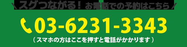 電話番号:03-6231-3343